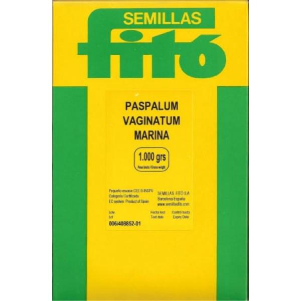 PASPALUM VAGINATUM «Marina» - ΧΛΟΟΤΑΠΗΤΑΣ ΑΝΤΟΧΗΣ ΣΕ ΥΨΗΛΗ ΑΛΑΤΟΤΗΤΑ (1Kg)